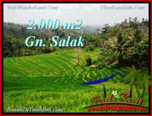 Affordable PROPERTY LAND IN TABANAN FOR SALE TJTB220