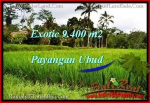 Exotic PROPERTY 9,400 m2 LAND IN Ubud Payangan FOR SALE TJUB526