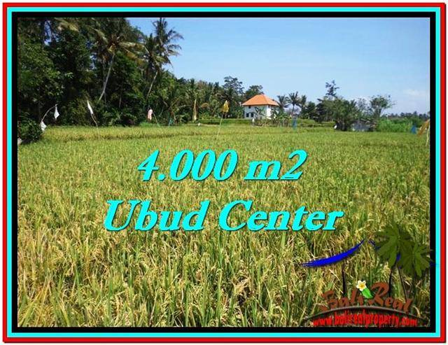 FOR SALE Beautiful 4,000 m2 LAND IN UBUD BALI TJUB527