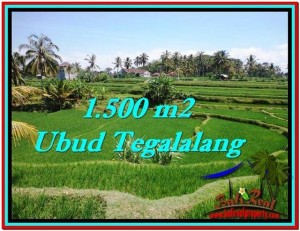 Beautiful PROPERTY 1,500 m2 LAND SALE IN Ubud Tegalalang TJUB528