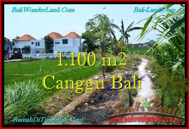 Beautiful CANGGU 1,100 m2 LAND FOR SALE TJCG193