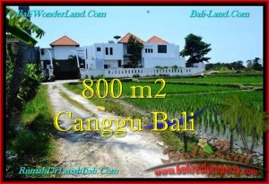 Beautiful PROPERTY 800 m2 LAND IN CANGGU BALI FOR SALE TJCG194