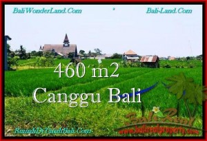 LAND IN Canggu Brawa FOR SALE TJCG195