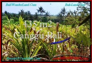 Affordable Canggu Pererenan LAND FOR SALE TJCG196