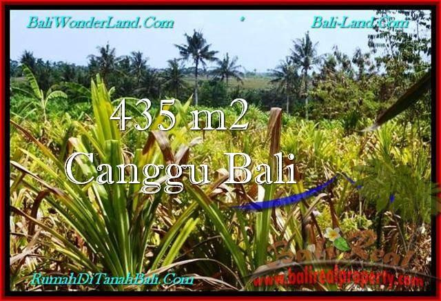 Affordable PROPERTY Canggu Pererenan 435 m2 LAND FOR SALE IN BALI TJCG196