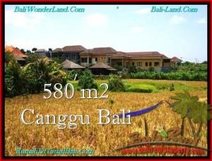 Affordable Canggu Pererenan LAND FOR SALE TJCG197