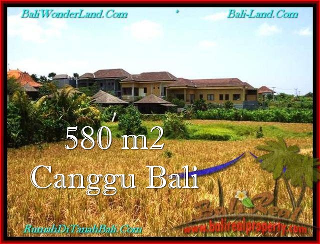 Affordable PROPERTY Canggu Pererenan 580 m2 LAND FOR SALE IN BALI TJCG197