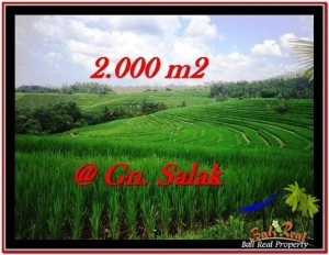 Tabanan Selemadeg BALI LAND FOR SALE TJTB227
