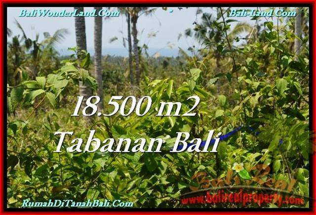 Exotic PROPERTY TABANAN LAND FOR SALE TJTB232