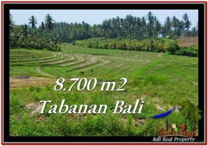Magnificent PROPERTY LAND SALE IN TABANAN TJTB233
