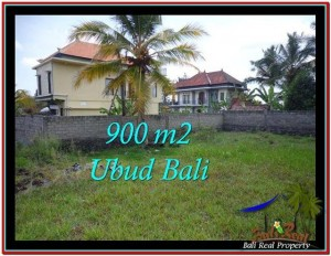 FOR SALE Affordable LAND IN Ubud Tampak Siring BALI TJUB532