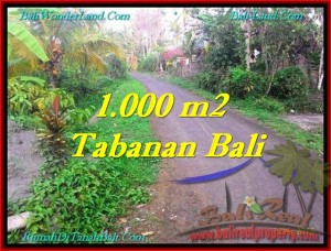 FOR SALE Affordable PROPERTY 1,000 m2 LAND IN TABANAN BALI TJTB242