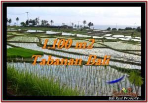 Tabanan Selemadeg BALI LAND FOR SALE TJTB248