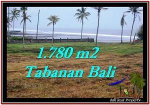 Affordable LAND SALE IN Tabanan Selemadeg BALI TJTB249