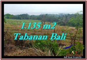 Exotic TABANAN BALI 1,135 m2 LAND FOR SALE TJTB253