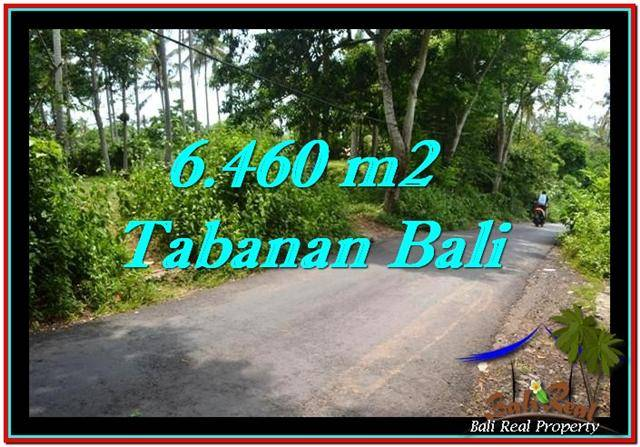 Magnificent PROPERTY 6,460 m2 LAND IN Tabanan Selemadeg FOR SALE TJTB256