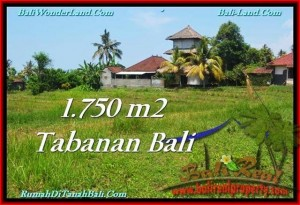 FOR SALE Beautiful PROPERTY 1,750 m2 LAND IN Tabanan Selemadeg TJTB231