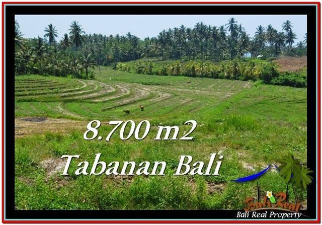 Exotic 8,700 m2 LAND SALE IN TABANAN BALI TJTB233
