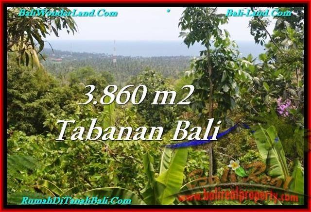 Beautiful LAND IN TABANAN FOR SALE TJTB236