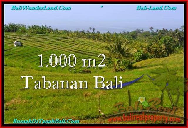 Beautiful PROPERTY 1,000 m2 LAND SALE IN Tabanan Selemadeg TJTB237