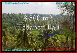Affordable TABANAN BALI 8,800 m2 LAND FOR SALE TJTB238