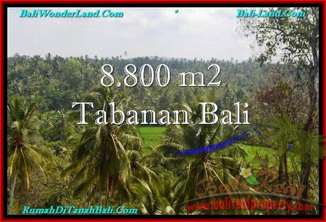 Exotic 8,800 m2 LAND SALE IN TABANAN BALI TJTB238