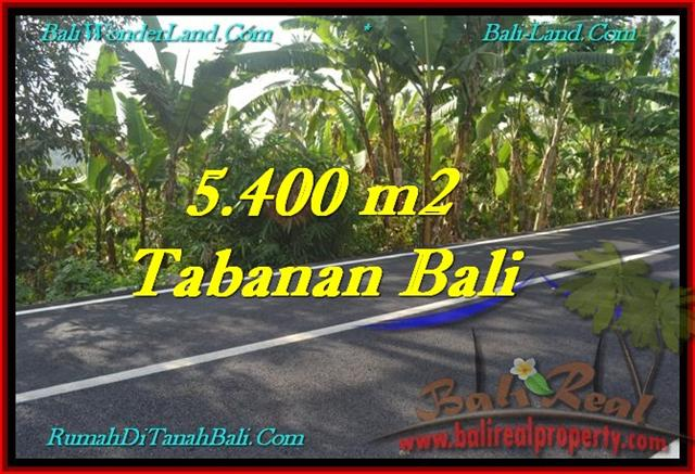 Affordable PROPERTY 5,400 m2 LAND FOR SALE IN Tabanan Selemadeg TJTB241