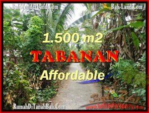 FOR SALE LAND IN Tabanan Selemadeg BALI TJTB159