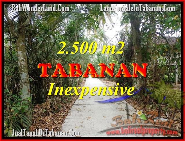Magnificent PROPERTY 2,500 m2 LAND SALE IN Tabanan Selemadeg TJTB160
