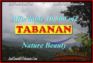 Exotic PROPERTY Sukasada 10,500 m2 LAND FOR SALE TJTB165