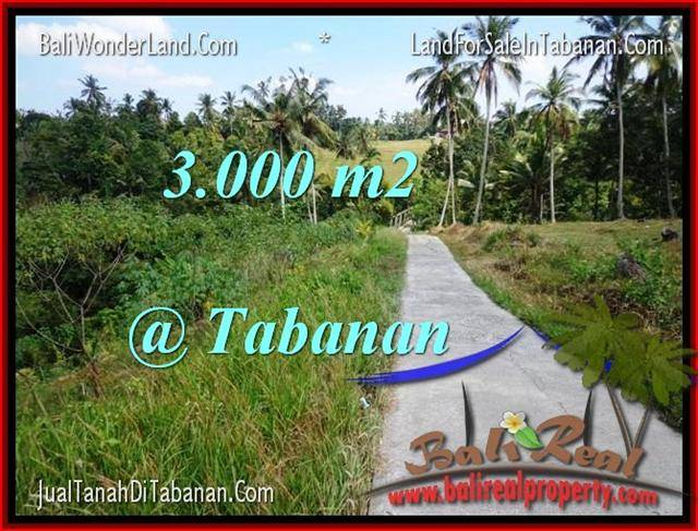 Magnificent PROPERTY Tabanan Selemadeg 3,000 m2 LAND FOR SALE TJTB205