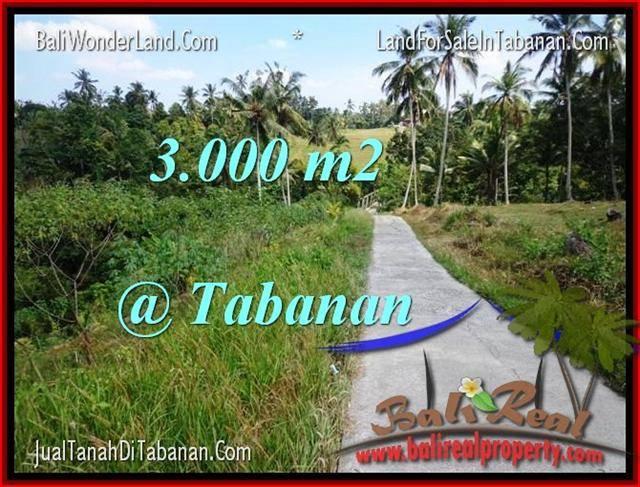 FOR SALE Affordable LAND IN Tabanan Selemadeg BALI TJTB205