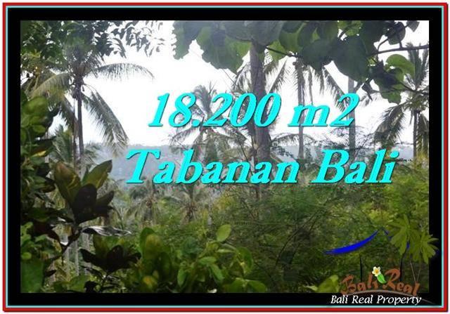 18,200 m2 LAND IN TABANAN BALI FOR SALE TJTB254