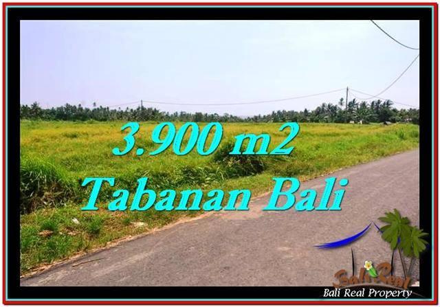 LAND SALE IN Tabanan Selemadeg BALI TJTB258