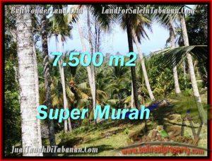 Beautiful LAND IN TABANAN FOR SALE TJTB207
