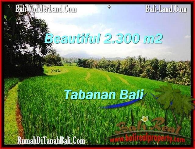 FOR SALE Affordable LAND IN Tabanan Selemadeg BALI TJTB209