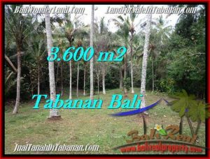 Affordable TABANAN BALI 3,600 m2 LAND FOR SALE TJTB211