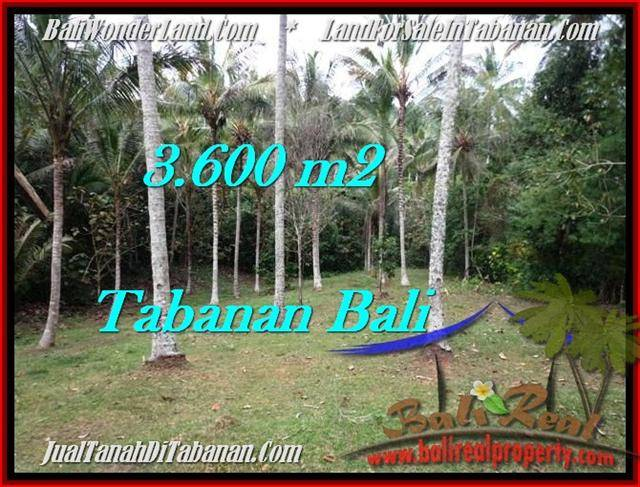 FOR SALE Magnificent PROPERTY LAND IN TABANAN TJTB211