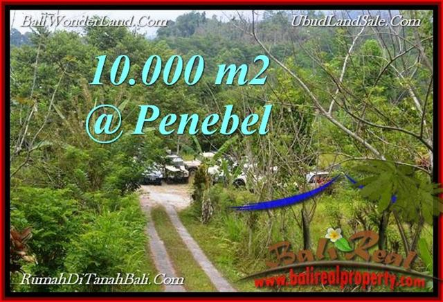 Exotic PROPERTY  TABANAN Jatiluwih 10,000 m2 LAND FOR SALE TJTB214