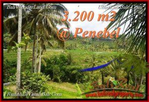 Magnificent LAND IN TABANAN FOR SALE TJTB216