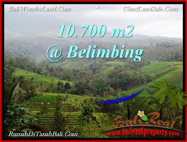 Magnificent LAND IN TABANAN FOR SALE TJTB219