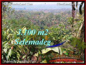 Beautiful PROPERTY LAND IN TABANAN BALI FOR SALE TJTB222