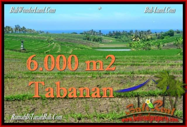 Exotic PROPERTY 6,000 m2 LAND FOR SALE IN Tabanan Selemadeg TJTB268