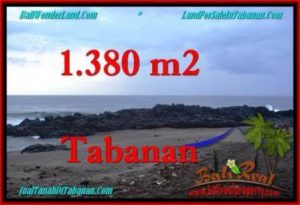 Magnificent PROPERTY 1,380 m2 LAND IN Tabanan Selemadeg FOR SALE TJTB270