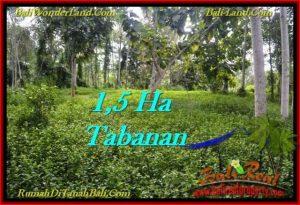 Affordable 15,550 m2 LAND FOR SALE IN TABANAN BALI TJTB272