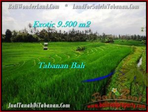 Exotic PROPERTY LAND SALE IN TABANAN TJTB210