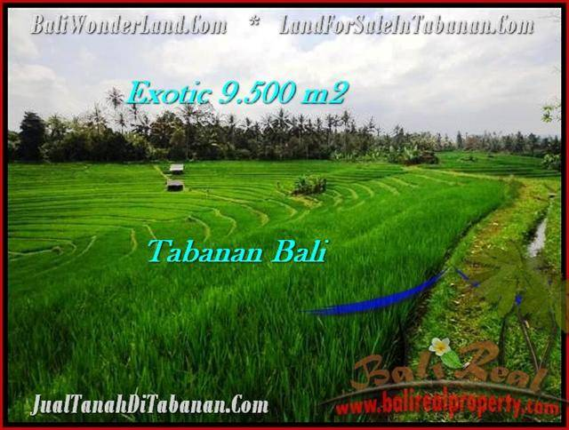 Magnificent LAND FOR SALE IN TABANAN TJTB210