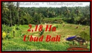 FOR SALE LAND IN Sentral Ubud BALI TJUB546