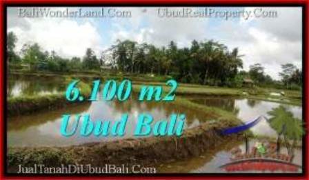 FOR SALE Exotic PROPERTY 6,100 m2 LAND IN Ubud Pejeng TJUB547