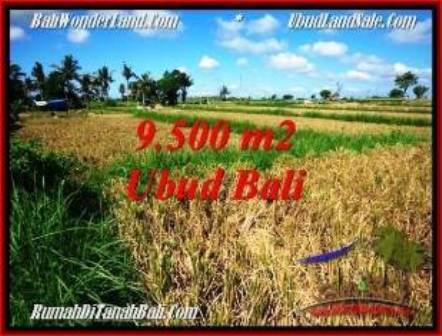 Beautiful PROPERTY Sentral Ubud BALI 9,500 m2 LAND FOR SALE TJUB548